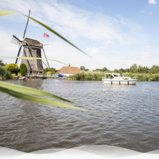 Asverstrooiing Rotterdam